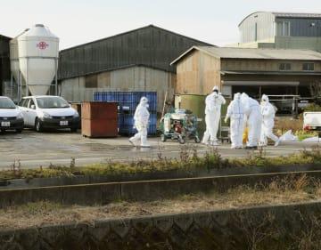 子豚から豚コレラの陽性反応が出た岐阜県本巣市の養豚場=30日午前9時26分