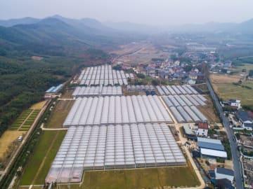 進む美しい農村のオール電化 浙江省徳清県