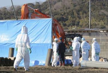 子豚から豚コレラの陽性反応が出た岐阜県本巣市の養豚場で、殺処分を進める作業員=30日午後2時32分