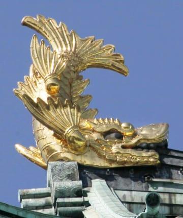 名古屋城天守閣のしゃちほこ=名古屋市(名古屋城総合事務所提供)