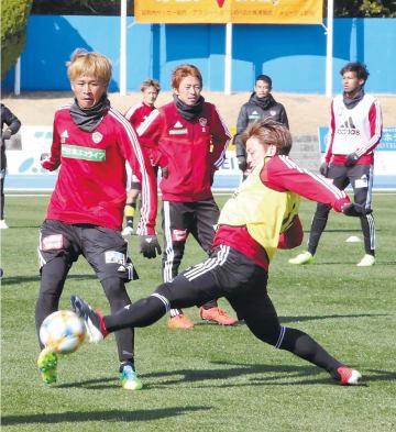 練習でボールを競り合う平岡(左)。中央は石原直、右端はジャーメイン