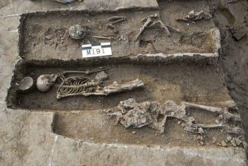 中国・上海の広富林遺跡で出土した人骨。中央の女性人骨から骨結核発症の痕跡を発見した(上海博物館提供)