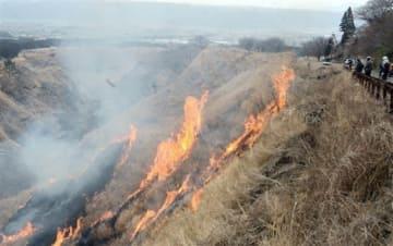 牧野の斜面を勢い良く駆け上がる炎。奥は阿蘇谷=阿蘇市