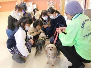 犬と触れ合う子どもたち=長岡市の県動物愛護センター