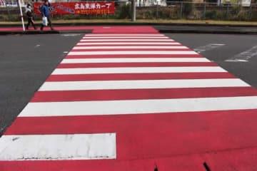 「カープ一本道」では横断歩道までもが赤で塗装されている【写真:広尾晃】