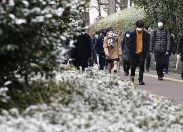 雪が積もった街路樹の横を歩く受験生ら=9日午前、東京都文京区