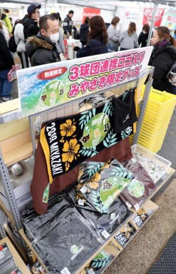 ソフトバンクのキャンプ地で売られている3球団のロゴが入ったグッズ=宮崎市・生目の杜運動公園