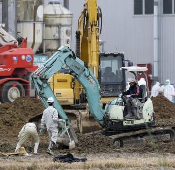 愛知県豊田市の養豚場で進む防疫作業=11日午後