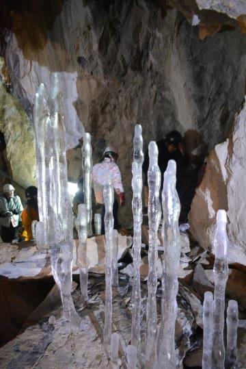 氷筍の造形美が来場者を魅了した観察会