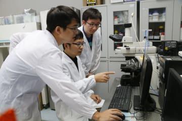中国の研究者、生物材料の形態変化の「制御キー」を発見