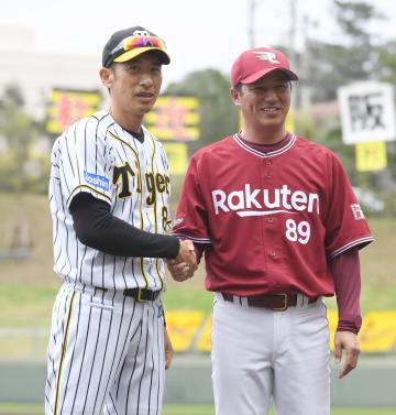 練習試合前に阪神の矢野監督(左)と握手する平石監督=14日、沖縄県宜野座市のかりゆしホテルズパーク宜野座