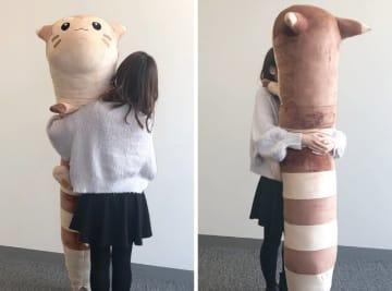 どうながポケモン「オオタチ」が等身大ぬいぐるみで登場―全長約180cmのビッグサイズ!