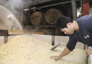 熊本県人吉市で始まった、大地震や豪雨で被災した8道県産のコメをブレンドした焼酎の仕込み作業=16日午後