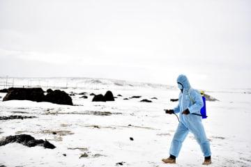 青海省玉樹、大雪被害への対応強化