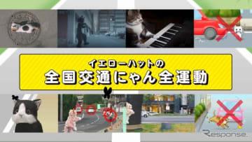 猫専用の交通安全動画