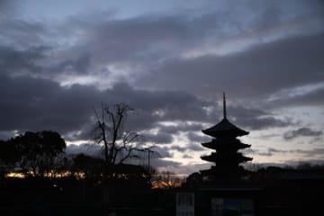 千年の都は夜明けが美しい。世界遺産「東寺」早朝特別拝観ツアー