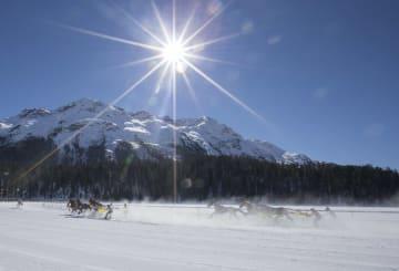 スイス·サンモリッツで雪上競馬大会開催