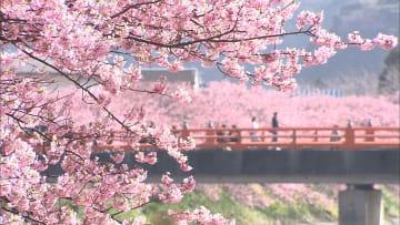 4月並み陽気で花粉舞う シーズン到来
