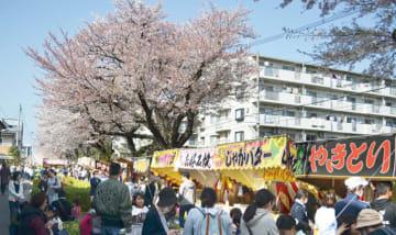 2019さがみ野さくら祭り【3月30日~31日、4月6日~7日】