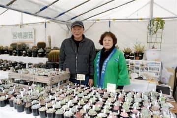 宮嶋園芸が多く扱っている多肉植物(手前)。左は宮嶋洋一さん=熊本市中央区