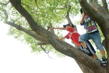 ほどがやワクワクプレイパーク@県立保土ケ谷公園