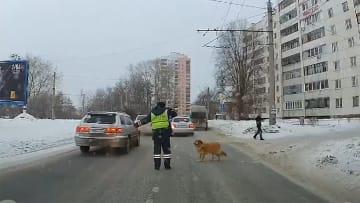 心温まる交通整理 警察官の行動に感動の声