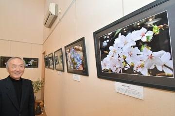 【熊野地方で撮影した草木の花をテーマに開かれている松本純一さんの写真展(和歌山県田辺市本宮町で)】