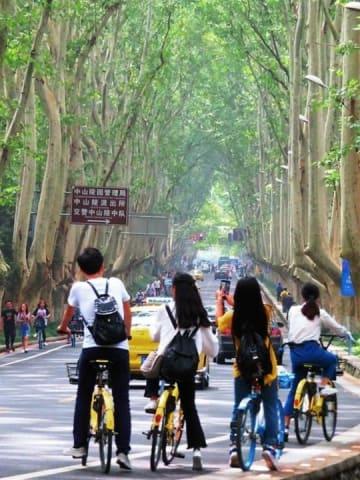 <在日中国人のブログ>中国の最新事情と「拆二代」「富二代」「官二代」