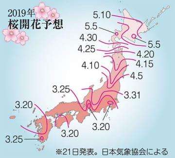 今年のサクラ 青森市は早咲き4月19日/日本気象協会予測