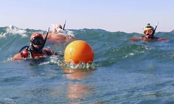 福島県南相馬市の沖合で行われた海中捜索=24日(福島海上保安部提供)