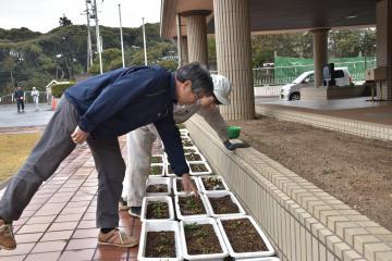 北茨城特別支援学校の生徒と花のプランターへの追肥などを行う高萩高の八木沼好美教諭(手前)=北茨城市中郷町