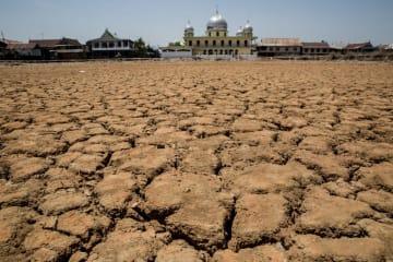 インドネシアのスラウェシ島マカッサルで、エルニーニョの影響で干ばつに見舞われた土地=2015年9月(ゲッティ=共同)
