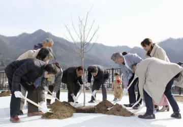 桜の苗木に土をかける、中央自動車道笹子トンネルの天井板崩落事故の遺族ら=27日午後、山梨県大月市