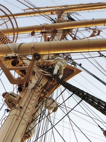男子実習生が転落死した練習船「日本丸」のマストで、事故を再現し検証する様子=2018年4月、東京・晴海埠頭(運輸安全委員会提供)