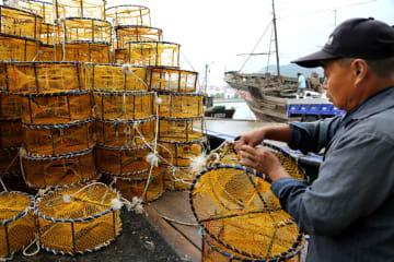 中国、黄海冷水塊海域でサーモンの大規模養殖を開始