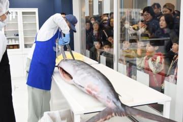 全長3メートルのマカジキを解体する漁協職員=勝浦市