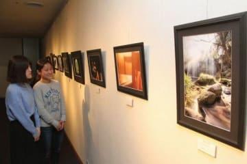 アングルや被写体に工夫を凝らした大学生の写真展