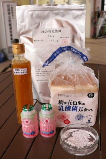 ウメの花から抽出した乳酸菌の粉末(右手前)と商品=日田市上城内町