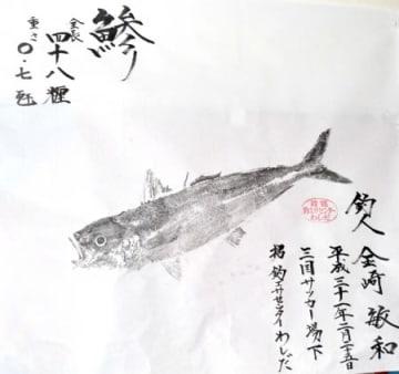 金崎さんのアジ魚拓