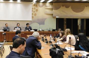 ジュネーブの国連欧州本部で行われた、日本での共同親権導入を訴える国連人権理事会のサイドイベント=11日(共同)