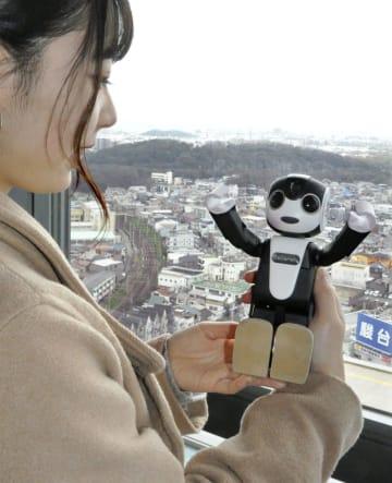 堺市役所の展望ロビーを巡るロボホン=13日、堺市