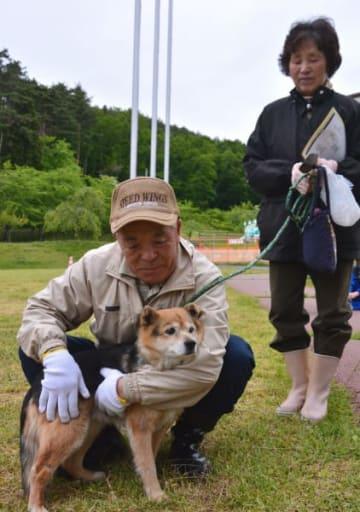 避難後、飼い犬のココアを抱き落ち着かせる高成吉治さん(左)、ヒロさん夫妻=15日、久慈市旭町