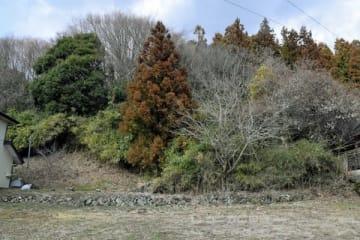 花山院師重が館を構えたと推定される場所=中之条町青山