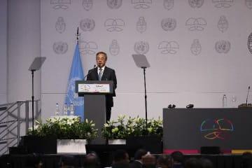 胡春華副総理、第2回国連南南協力ハイレベル会合に出席