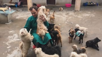 外国人教師の野犬保護施設から広がる善意の輪 安徽省合肥市