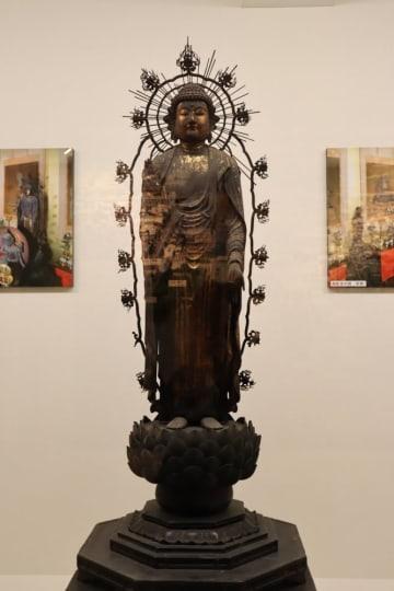 御影堂修理に伴って特別展示されている釈迦如来立像