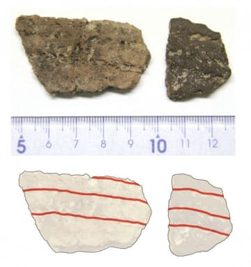 彦崎貝塚から出土した粟島台式土器の破片(上)と粟島台式土器のイラスト(下)。赤線部分に縄目の文様が見える