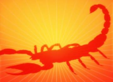 Scorpio Horoscope: Daily Reading