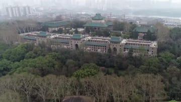 武漢大学の桜が満開 湖北省