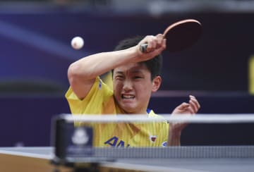 張本智和が2回戦進出 卓球のカタール·オープン